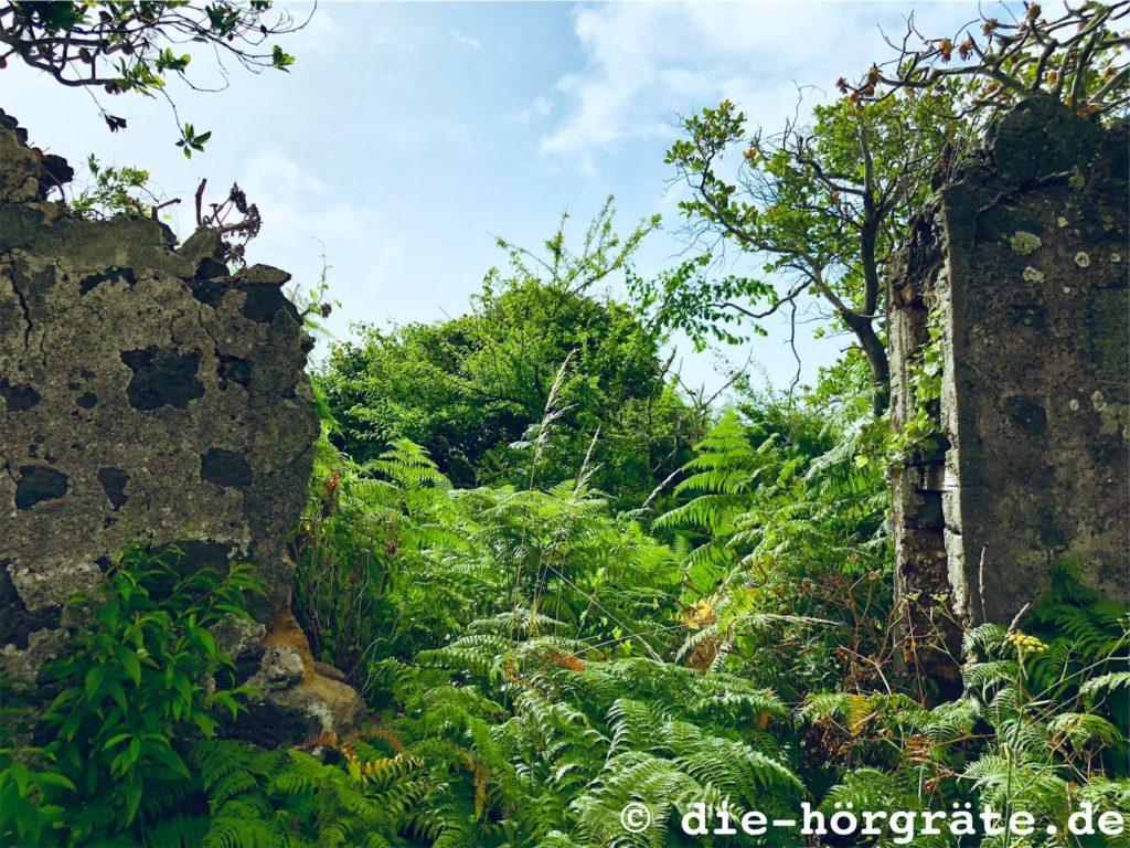 ein verlassenes Gehöft in der Nähe von Villa de Mazo