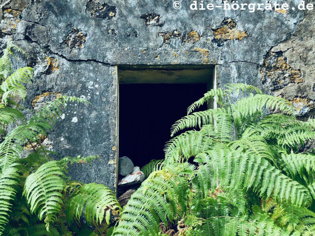 altes Gehöft auf La Palma