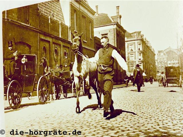 Hören und Demenz - altes Foto, ein Mann führt ein Pferd