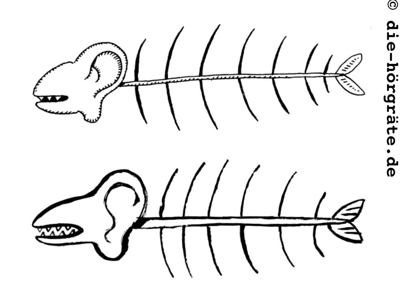 zwei Gräten mit Ohren und sehr kleinen Schwanzflossen, aber ohne Augen